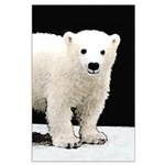 Polar Bear Cub Large Poster