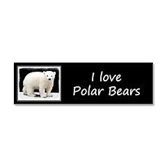 Polar Bear Cub Car Magnet 10 x 3