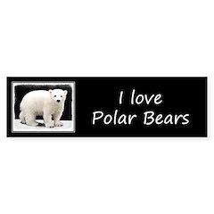 Polar Bear Cub Sticker (Bumper)
