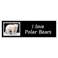 Polar Bear Cub Sticker (Bumper 10 pk)