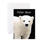 Polar Bear Cub Greeting Cards (Pk of 10)