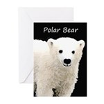 Polar Bear Cub Greeting Cards (Pk of 20)
