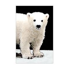 Polar Bear Cub Posters