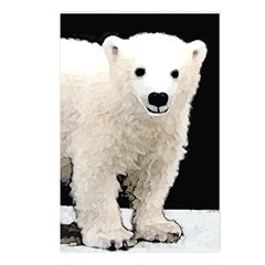 Polar Bear Cub Postcards (Package of 8)