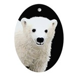 Polar Bear Cub Oval Ornament