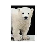 Polar Bear Cub Rectangle Magnet (100 pack)