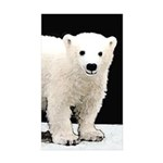 Polar Bear Cub Sticker (Rectangle 50 pk)
