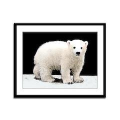 Polar Bear Cub Framed Panel Print