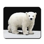 Polar Bear Cub Mousepad