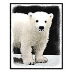 Polar Bear Cub Small Poster
