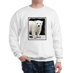 Polar Bear Cub Sweatshirt