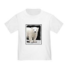 Polar Bear Cub T