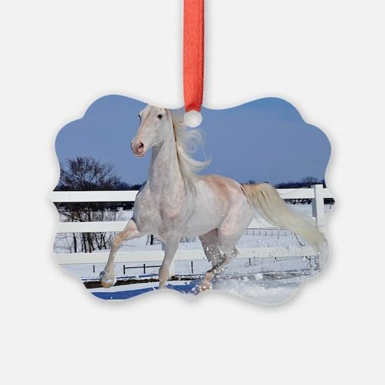 roan_Large_framed Ornament