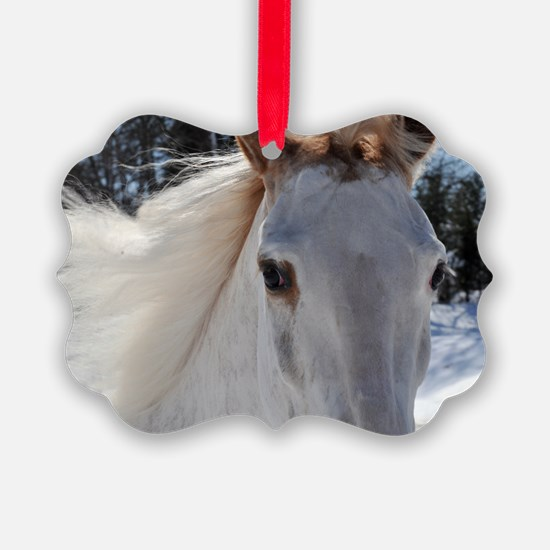 horse_eyes_7.5card Ornament