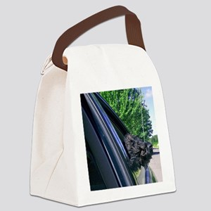 Breezy Canvas Lunch Bag