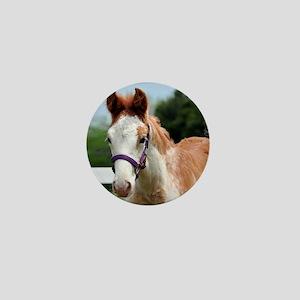 roan_foal_rnd Mini Button