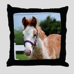 roan_foal_rnd Throw Pillow
