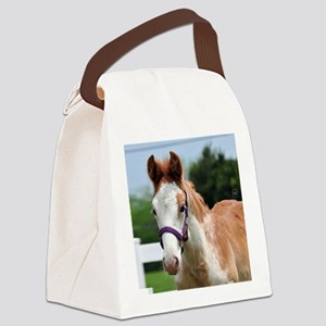 roan_foal_rnd Canvas Lunch Bag