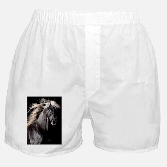 choco_horse_journal Boxer Shorts