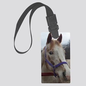 Lucy2 Large Luggage Tag