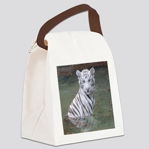 Copy of IMG_4854 Canvas Lunch Bag