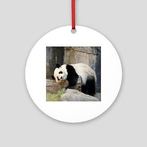Copy of panda1 Round Ornament
