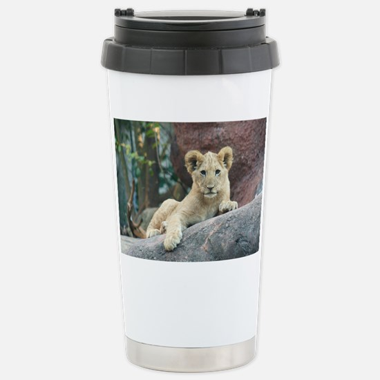 lion cub Stainless Steel Travel Mug