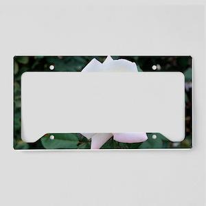 IMG_5790 License Plate Holder
