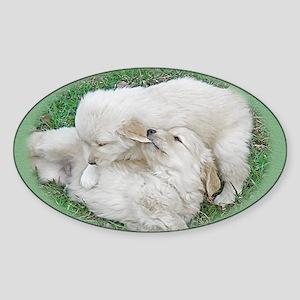 Golden Retriever Puppy Wall Calenda Sticker (Oval)