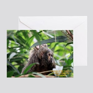 Cover Creatures of the Rainforest Greeting Card