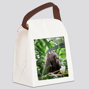 Cover Creatures of the Rainforest Canvas Lunch Bag