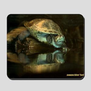 Amazon River Turtle Mousepad