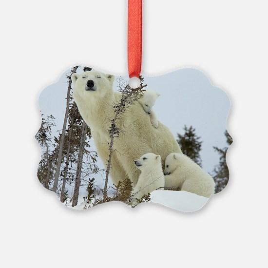 MPB L print Ornament