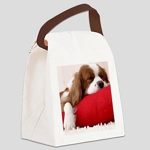 Spaniel pillow Canvas Lunch Bag