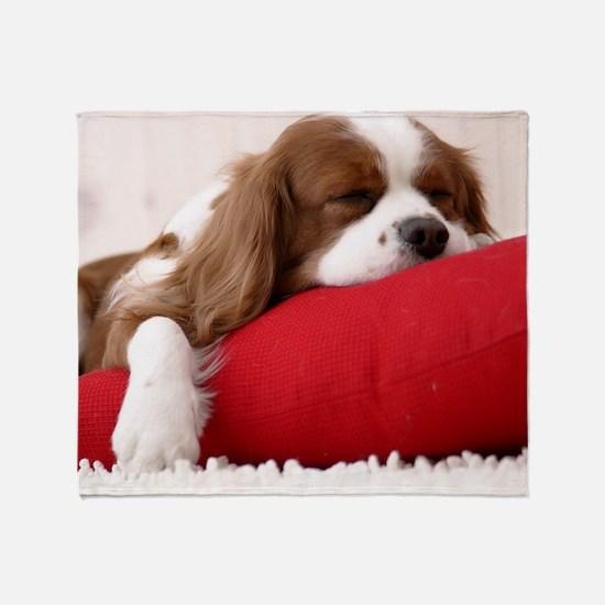 Spaniel pillow Throw Blanket