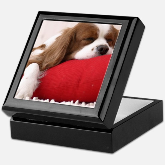 Spaniel pillow Keepsake Box