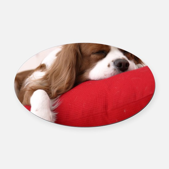 Spaniel pillow Oval Car Magnet