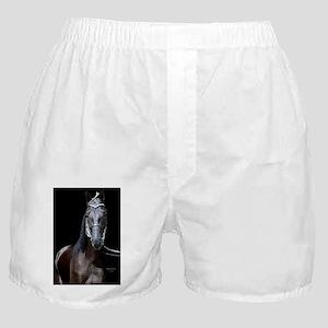 blk_walker_panel Boxer Shorts