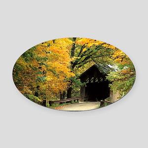 fallposter Oval Car Magnet