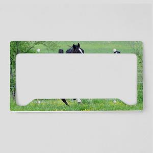 sp_walker_sm_frame License Plate Holder