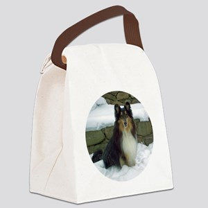 2011 orn b Canvas Lunch Bag