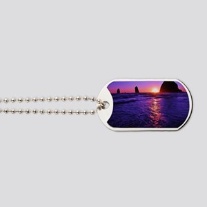 Haystack Rock Sunset Dog Tags