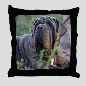IMG_9709 Throw Pillow