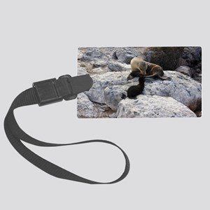 Mother and Baby Sea Lion Galapag Large Luggage Tag