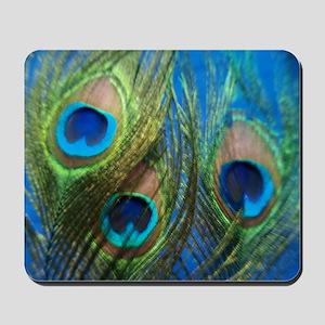 fisheye peacock Mousepad