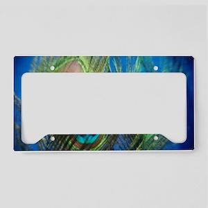 fisheye peacock License Plate Holder