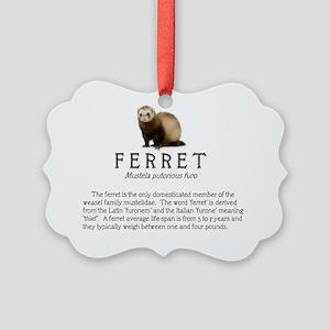 newferretinfo Picture Ornament