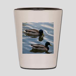Duck (1) Shot Glass