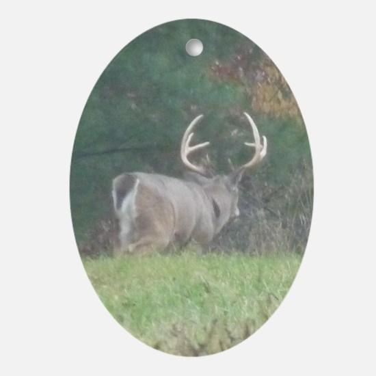 Buck2.34x3.2 Oval Ornament