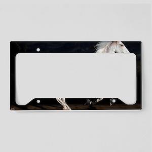 fastzoe_lp License Plate Holder